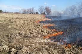 Հրազդանում կրակի ճիրաններում են հայտնվել անտառներն և հարակից տները
