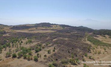ՏԵՍԱՆՅՈՒԹ. Բյուրականի հրդեհը մարված է, այրվել է մոտ 100 հա խոտածածկ տարածք