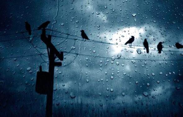 Քամի, անձրև, ամպրոպ. եղանակը Հայաստանում և Արցախում
