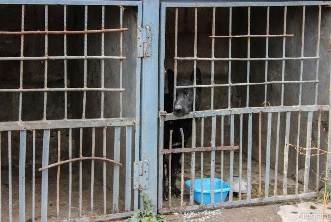 «Փաստ». «Յունիգրաֆ-Իքս»-ի տնօրենին սպառնում է 5-10 տարվա ազատազրկում