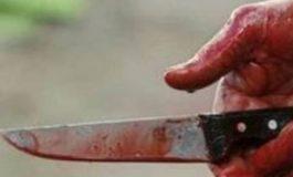 Երևանում դանակի շուրջ 70 հարված հասցնելով դաժանաբար սպանել է նախկին կնոջը, արգելել երեխային՝ հանդիպել մորը