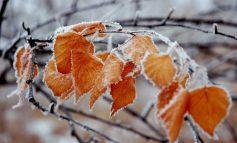 Հանրապետությունում կգրանցվի մինչև -7 աստիճան ցուրտ. եղանակը Հայաստանում ու Արցախում