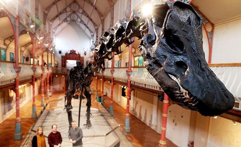 Գիտնականները Արգենտինայում գտել են առաջին հսկայական դինոզավրին