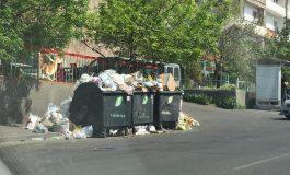 ՖՈՏՈ. Աղբի կույտերը արդեն դարձել են մեր քաղաքի անբաժանելի մի մասը. ԱԺ պատգամավոր Արման Աբովյան