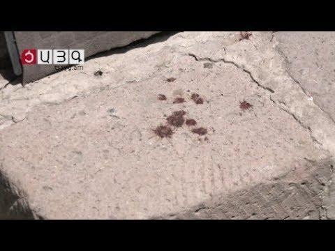 ՏԵՍԱՆՅՈՒԹ. «Սուսանը հոն է». քրոջը սպանած, այնուհետ ինքնասպանություն գործածի վերջին գրառումը
