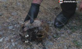ՖՈՏՈ. Առեղծվածային դեպք Արարատի մարզում. Այնթապ գյուղում՝ առվակի մեջ, հայտնաբերվել է մարդու գանգ