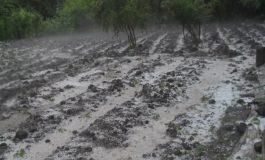 Ուժգին կարկուտը հողին է հավասարեցրել գյուղացու աշխատանքը