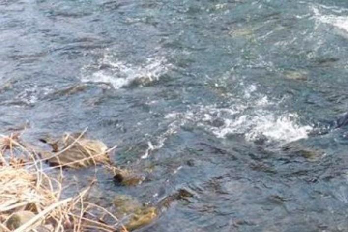 Դիլիջան-Իջեւան ճանապարհին «Hondai Elisyon»-ն ընկել է ջրատարը. 4 վիրավորներից մեկը 8-ամյա երեխա է