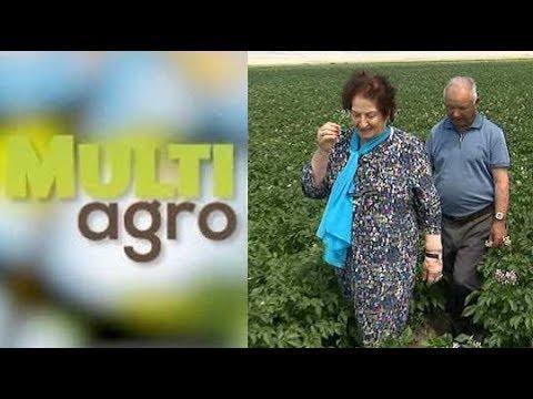 ՏԵՍԱՆՅՈՒԹ. Ռոզա Ծառուկյանի գլխավորած «Մուլտի Ագրո»-ն աշխատատեղեր է ապահովում 100-ավոր վարդենիսցիների համար