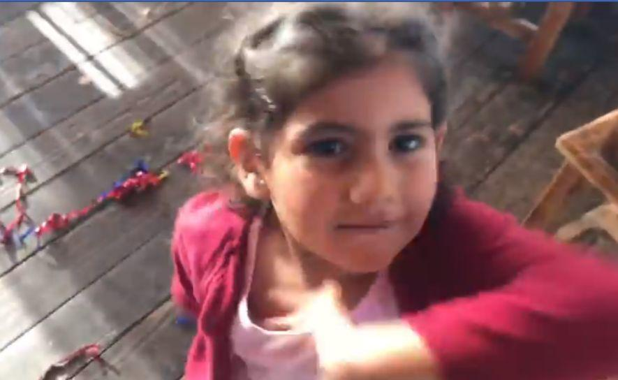 Ինչպես է փոքրիկ Արփին խոչընդոտում ազատ լրատվամիջոցի աշխատանքը. ՀՀ վարչապետը տեսանյութ է հրապարակել