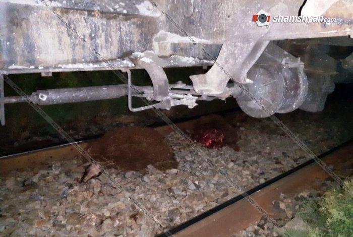 ՖՈՏՈ. Գնացքը վրարերթի է ենթարկել ոչխարի հոտը. 59 գլուխ սատկել է
