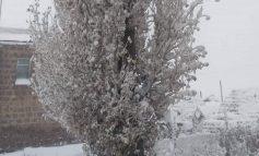 Հայաստանում կգրանցվի մինչև -12 աստիճան ցուրտ. եղանակը Հայաստանում ու Արցախում