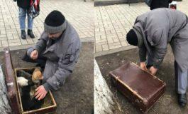 Ահազանգ. Երևանում տղամարդը շան ձագերին պահում է փակ ճամպրուկի մեջ